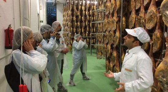 Visitando la factoría Montesano